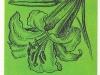 Трубчатая форма цветка